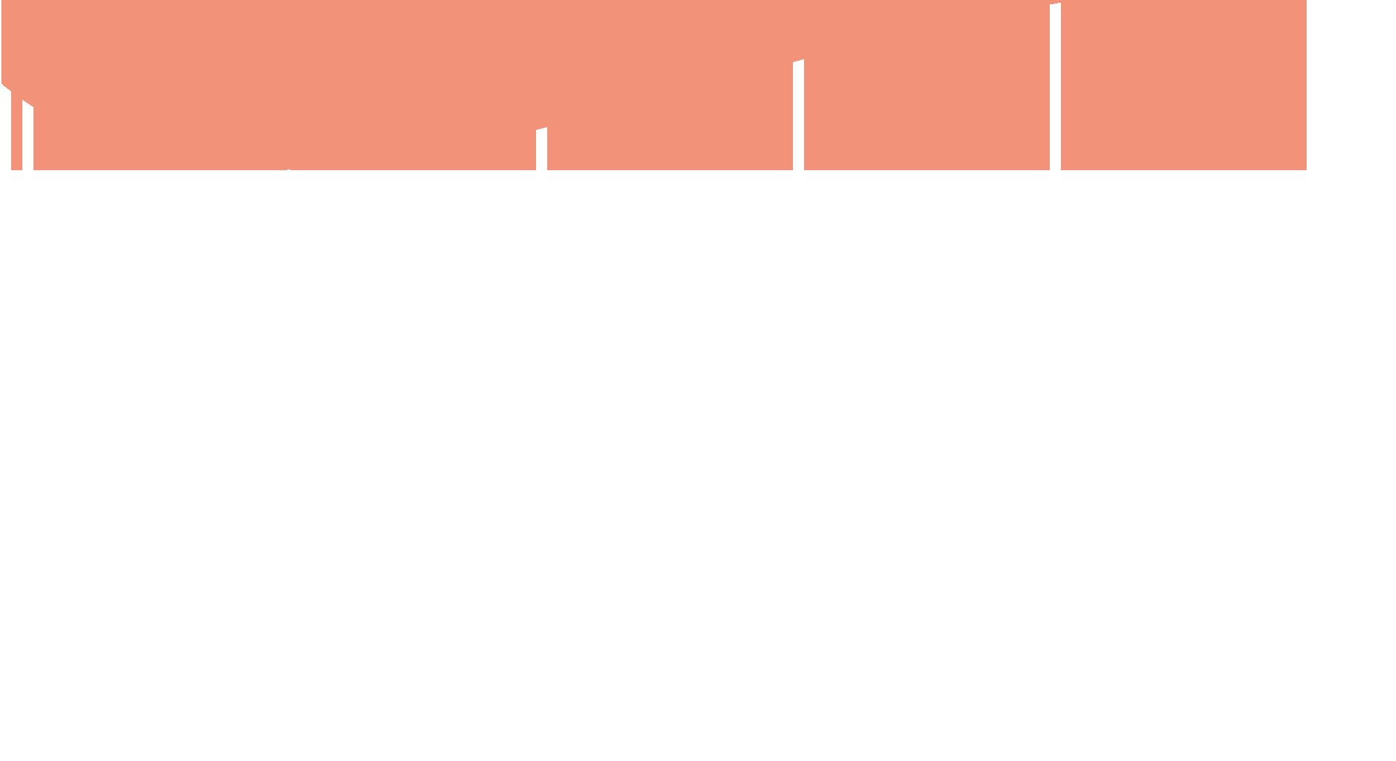 Vlot Vleeskenner